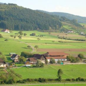 Friedmann Lunzenhof